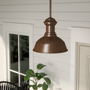Vallie 1-Light Outdoor Pendant