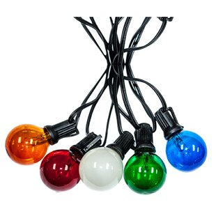 String Light Company 25-Light Globe String Lights