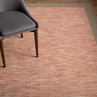 Loranger Orange Indoor/Outdoor Area Rug