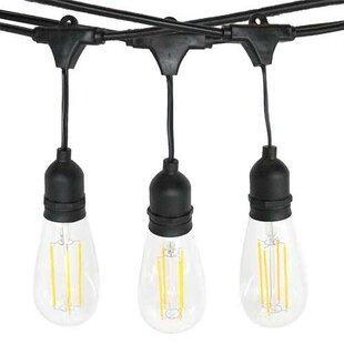 Williston Forge Abrahamson Dimmable Outdoor 15 Light Globe String Light