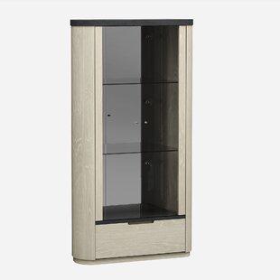 Orren Ellis Sigel Lighted Curio Cabinet