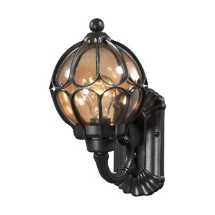 Read Reviews Colne 1-Light Outdoor Barn Light By Charlton Home