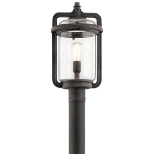 Araiza Outdoor 1-Light Lantern Head by Longshore Tides