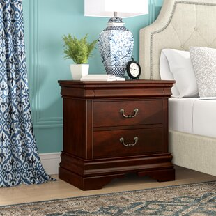 Raina 2 Drawer Nightstand by Alcott Hill