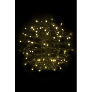 The Holiday Aisle Fold Flat Sphere Net Lights with 100 LED Lights