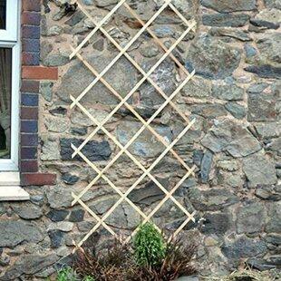 Expanding Wooden Garden Expanding Trellis By Symple Stuff