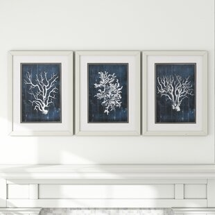 U0027Wood Coralu0027 3 Piece Framed Graphic Art Set In Blue