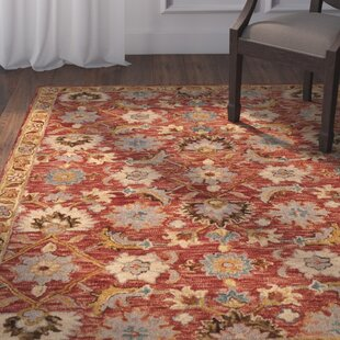 Watertown Hand-Hooked Terracotta/Gold Area Rug by Astoria Grand