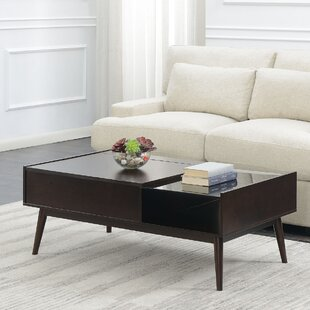 Ibrahim Coffee Table with Storage