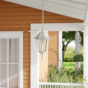 Oakhill Traditional 1-Light Outdoor Hanging Lantern