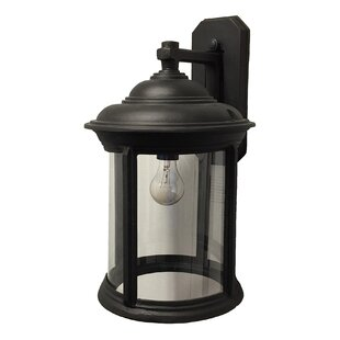 Where buy  Perales 1-Light Outdoor Wall Lantern By Alcott Hill