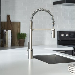 KOHLER Sous Pro Style Single Handle Pull Down Sprayer Kitchen homedepot.com p KOHLER Sous ProFaucet in 206086636