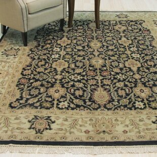 Shop For Ziegler Hand-Knotted Black Area Rug By Eastern Rugs