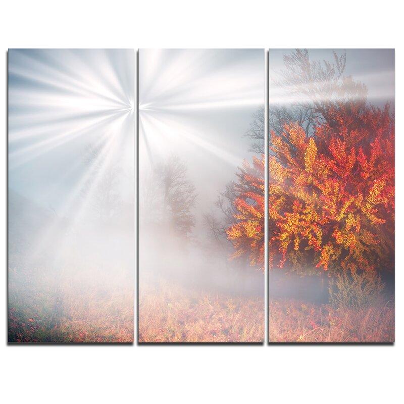 Designart Misty Sun In Red Autumn Forest 3 Piece Graphic Art On Wrapped Canvas Set Wayfair