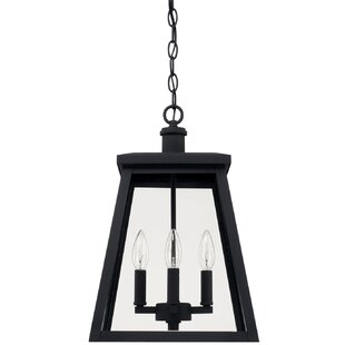 Upsala 4-Light Outdoor Hanging Lantern