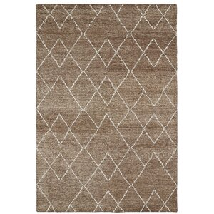 Aracely Handmade Brown / Ivory Area Rug