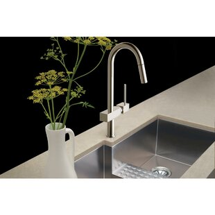 Avado Pull Down Single Handle Kitchen Faucet
