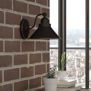 Best Reviews Schaff 1-Light Barn Light By Trent Austin Design
