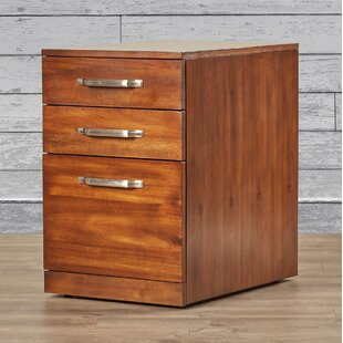Three Posts Bouley 3 Drawer Fi..