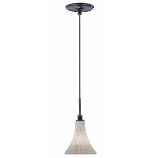 Charlton Home Winsford 1-Light Cone Pendant