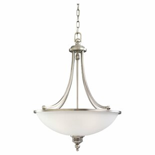 Darby Home Co Westerville 3-Light Bowl Pendant