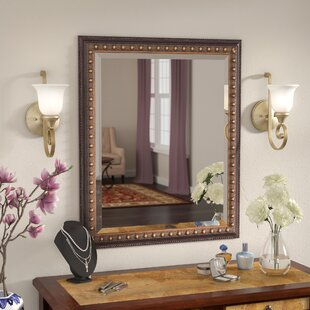 Traditional Wall Mirror by Astoria Grand