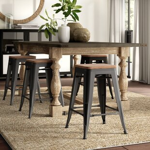 Fleischmann 24 Bar Stool (Set of 4) by Greyleigh