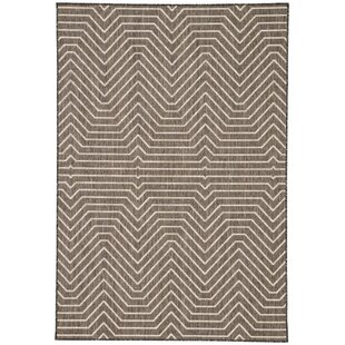 Clarion Brown Indoor/Outdoor Area Rug