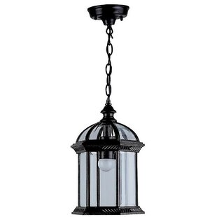 Huson 1-Light Outdoor Hanging Lantern