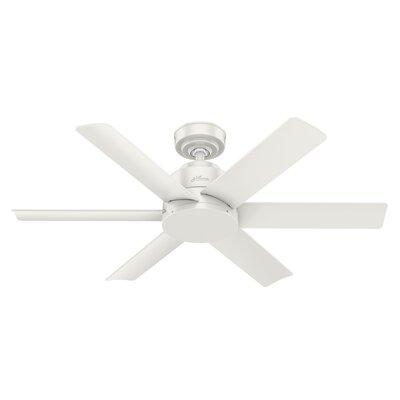 """44"""" Kennicott 6 Blade Outdoor Ceiling Fan Hunter Fan"""