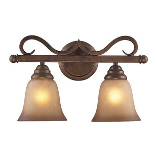 Darby Home Co Rosenblum 2-Light Vanity Light