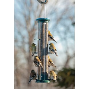 Audubon/Woodlink Port Finch Tube Bird Feeder