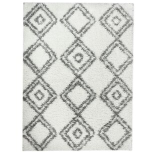 Online Reviews Acevedo Snow White/Gray Area Rug By Union Rustic