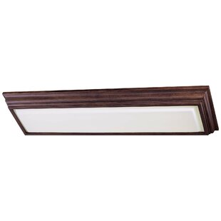 2-Light Kitchen Strip Light