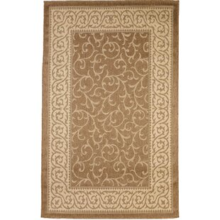 Rawls Gold/Beige Indoor/Outdoor Area Rug by Fleur De Lis Living