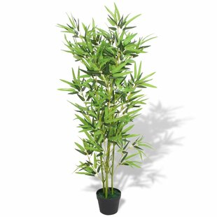 Floor Bamboo Tree In Pot By Bay Isle Home