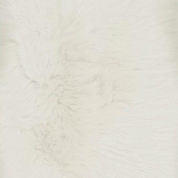 Polyester White Rugs Joss Main
