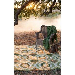 Mosher Hand-Hooked Green Indoor/Outdoor Area Rug