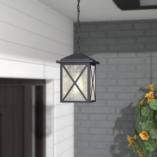 Erikson 1 Light Outdoor Hanging Lantern by Alcott Hill
