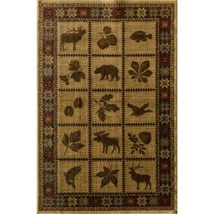 Lodge Sparta Kopin Area Rug By Central Oriental