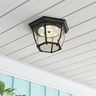 Diederich LED Outdoor Flush Mount by Alcott Hill