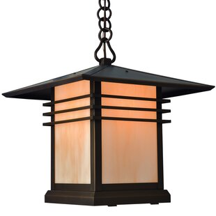 Loon Peak Sharp 1-Light Outdoor Hanging Lantern