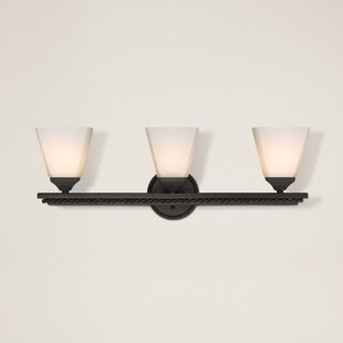 Darby Home Co Northfield 3-Light Vanity Light