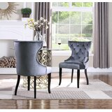 Malcolm Tufted Velvet Upholstered Wingback Dining Chair (Set of 2) by Everly Quinn