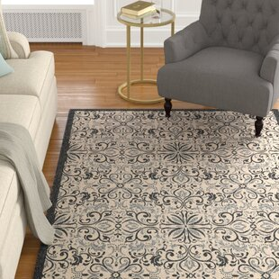 Read Reviews Ashby Ivory/Charcoal Indoor/Outdoor Area Rug By Charlton Home