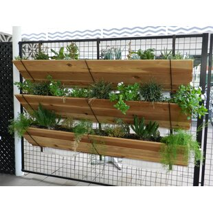 Daggett 3 Tier Hanging Wood Vertical Garden