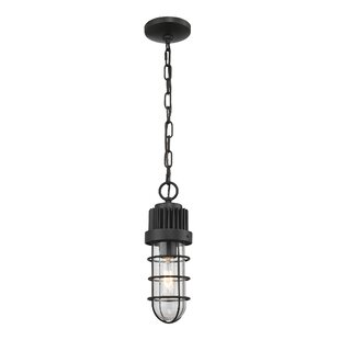 Leibowitz 1-Light Foyer Pendant by Breakwater Bay