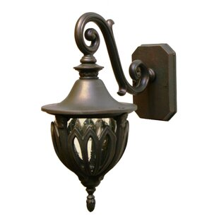 Order Phillipstown 1-Light Outdoor Wall Lantern By Alcott Hill