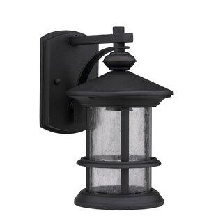Edington Outdoor Wall Lantern by Alcott Hill