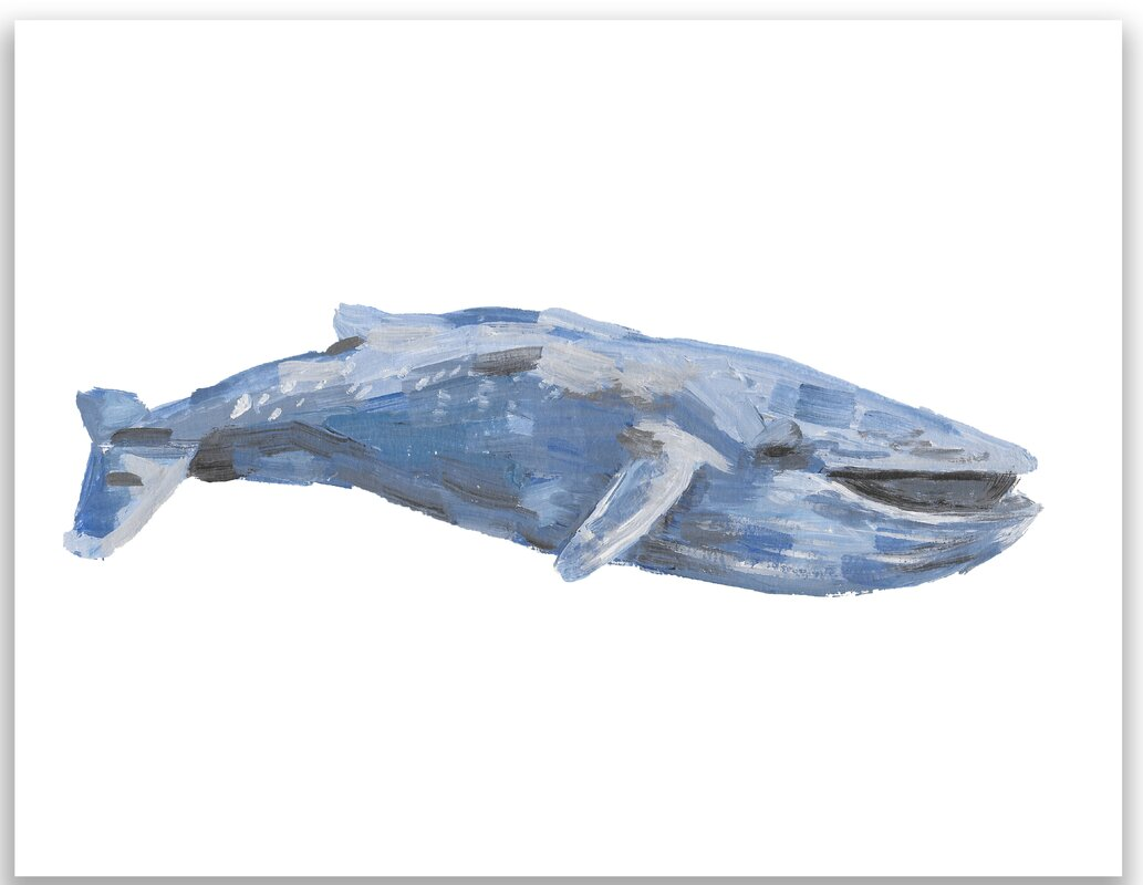 Uncategorized Blue Whale Pictures To Print jetty home 10 h x 8 w watercolor blue whale painting print print